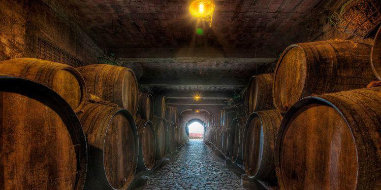 יין בטנריף