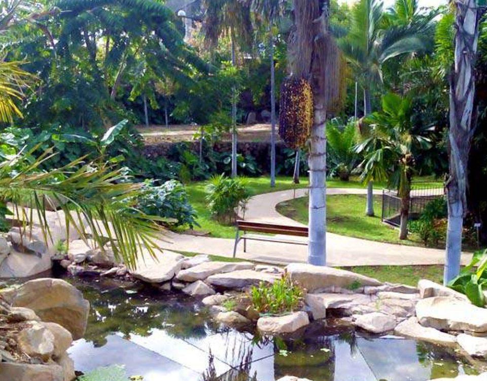 גן בוטני טנריף